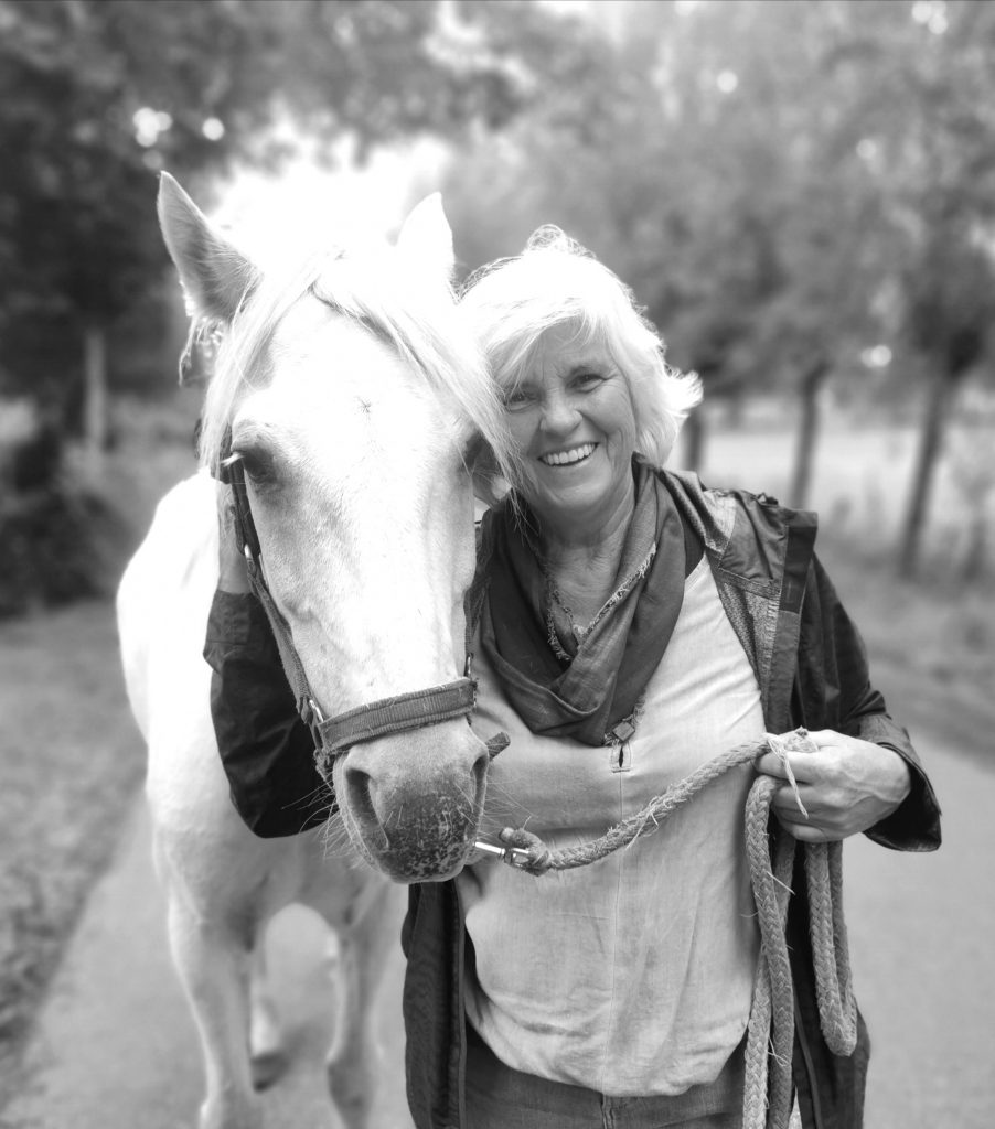 Systemische Paardencoaching